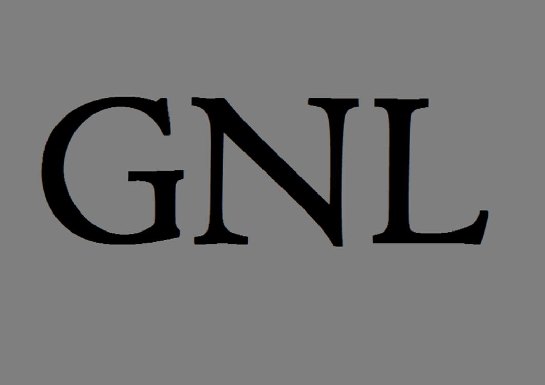 GNL Евро Дизель 10W-40 20л - фото
